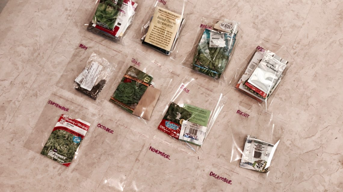 Organising Seeds for the Year Ahead