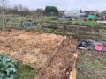 February at the Digging the Earth Allotment